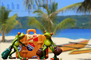 Ab in den Urlaub - aber nicht ohne die Reiseversicherungen von Hahn Consult